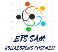 Site internet BTS SAM
